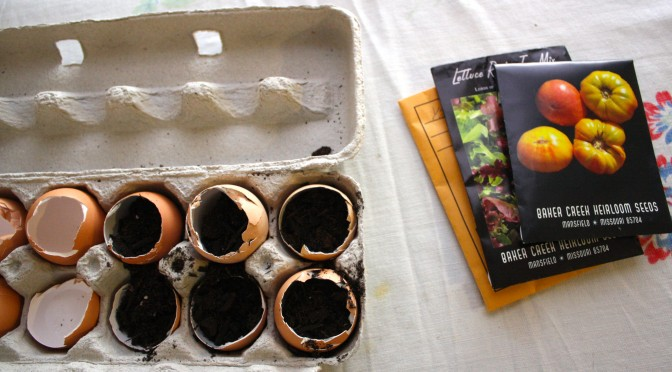 Supplies to grow seeds in eggshells.
