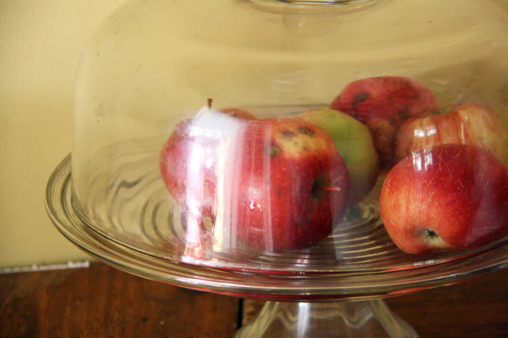 Fall Apples | redleafstyle.com