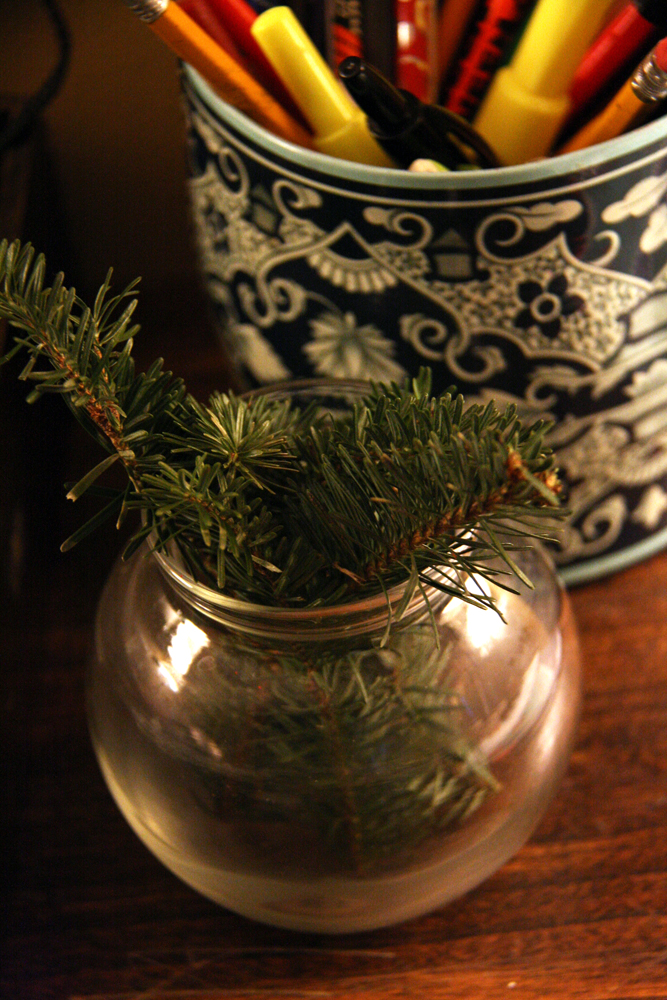 Winter greenery in a vase.