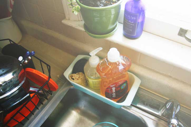 Sink with plant | redleafstyle.com