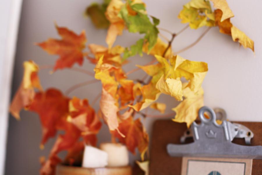 crunchy_leaves