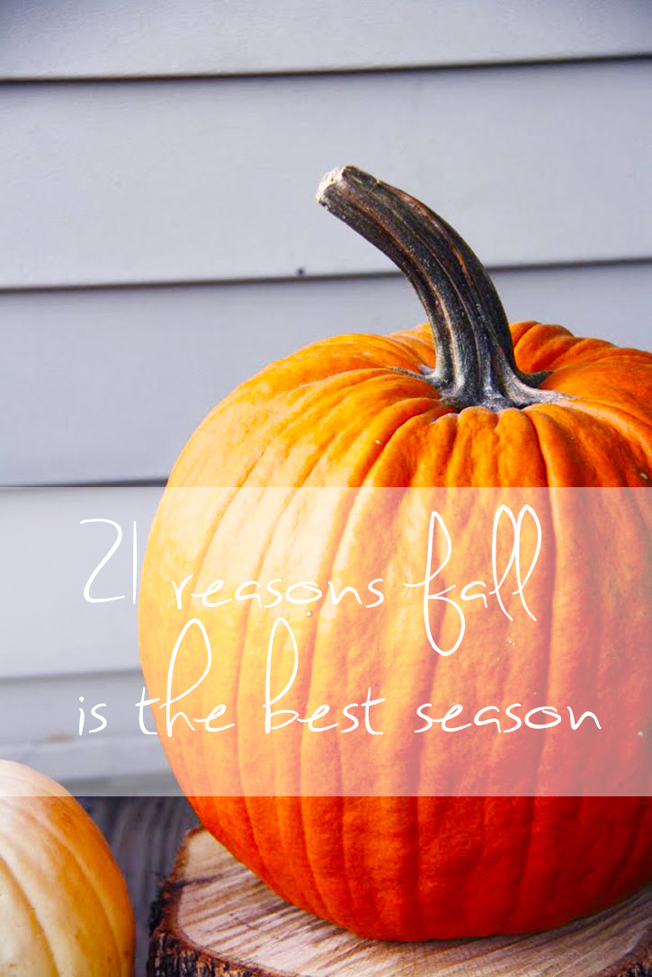 21 Reasons Fall is the Best Season | redleafstyle.com