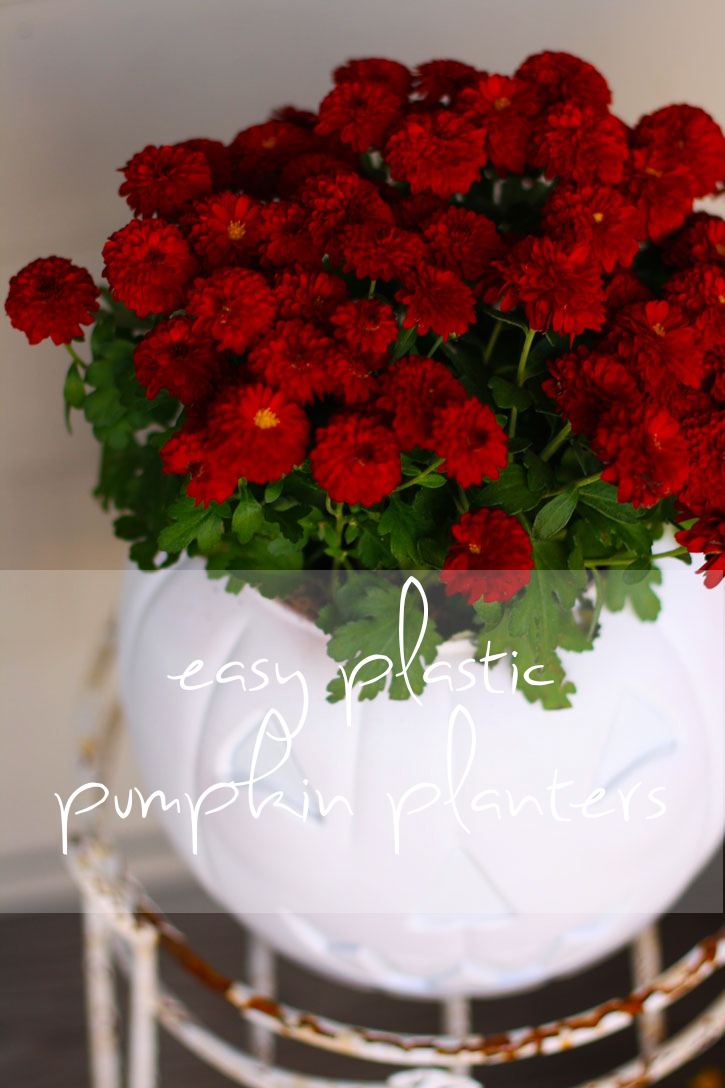 Easy Plastic Pumpkin Planter Red Leaf Style