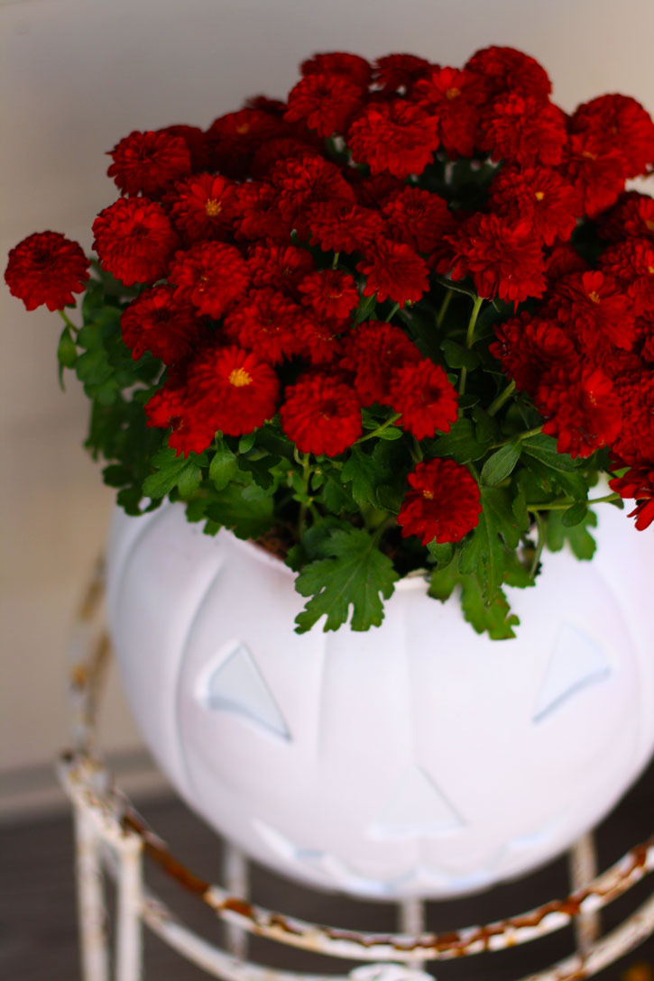 Easy Plastic Pumpkin Planter | redleafstyle.com