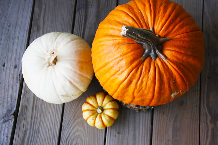 21 Reasons Fall is the Best Season   redleafstyle.com