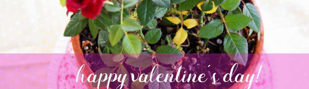 Happy Valentine's Day   redleafstyle.com